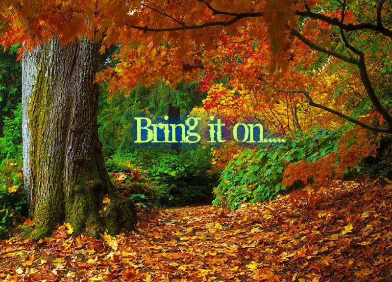 Fall Quotes: Fall Motivational Quotes